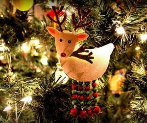 christmas tree, christmas, and lights image