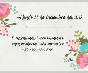 daily, diario, and frase image