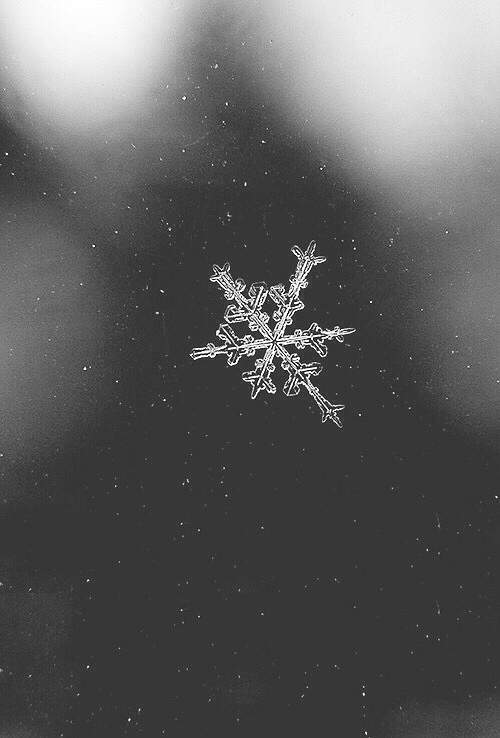 98 Images About Winter Wallpaper On We Heart It See
