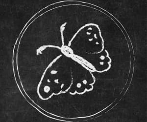 butterfly, chalkboard, and instagram image