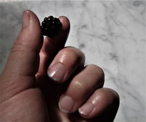 fruit, hand, and bluebarry image