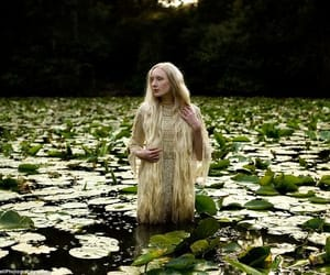 fantasy, kirsty mitchell, and lily pads image