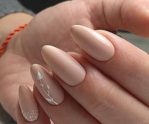 flowers, nail, and white image