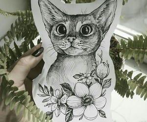 art, pinterest, and cat image