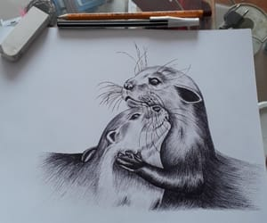 art, drawing, and otters image
