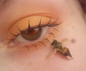 bee, aesthetic, and makeup image