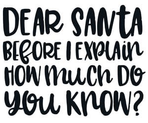 christmas, fun, and quotes image