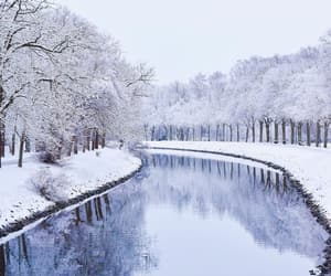 cold, flu, and nature image