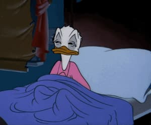 animation, duck, and bed image