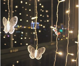 butterfly, christmas, and couple image