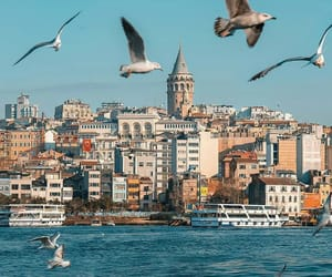 cities, istanbul, and photography image