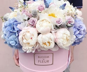 flowers, blue, and gift image