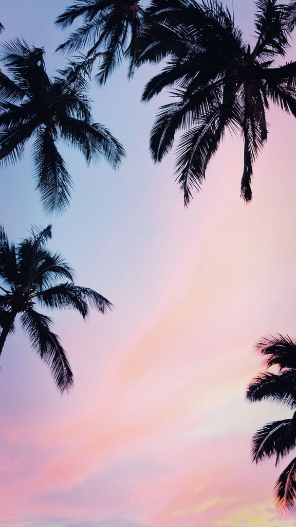 Iphone Xsmax Xs Xr Wallpapers On We Heart It