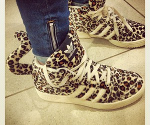 adidas, shoes, and leopard image
