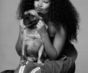 animals, black and white, and hair image