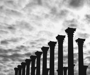 black and white, nature, and capital image