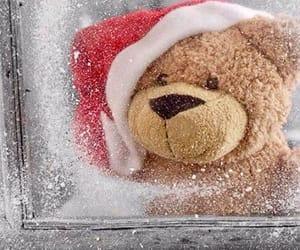snow, teddy, and window image