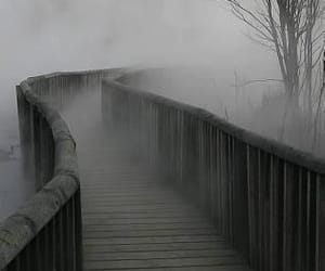 fog, bridge, and black and white image