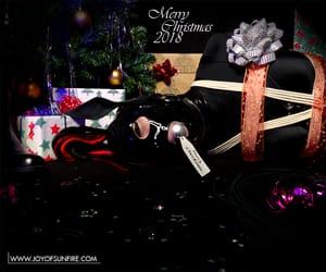 christmas, petgirl, and horse image
