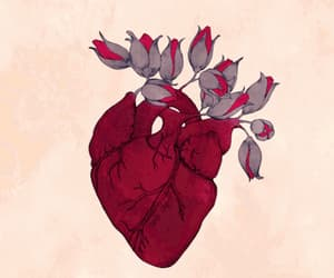 background, flowers, and heartbeat image