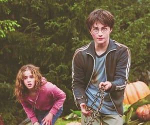 actors, harry potter, and hermione granger image