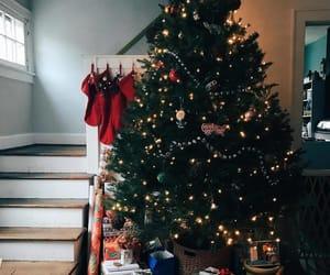 christmas lights, christmas tree, and xmas image
