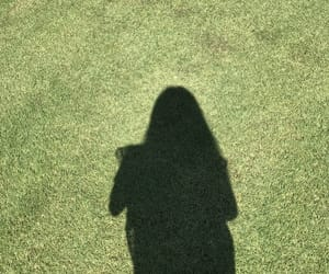 grass, green, and shadow image