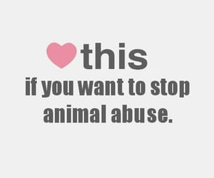 animal, stop, and heart image