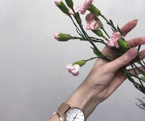 aesthetic, flowers, and hand image
