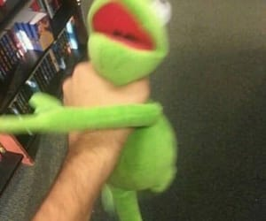 meme, kermit, and frog image