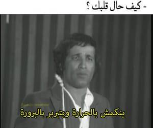 arabic, arabic quotes, and arab meme image