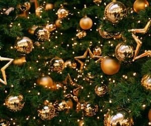 christmas, eve, and tree image