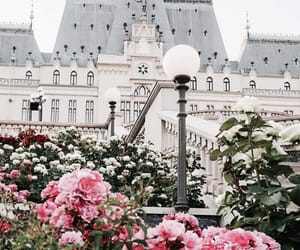 architecture, castle, and flowers image