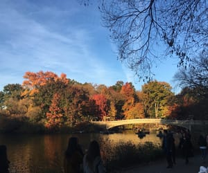 autumn, headers, and new york image