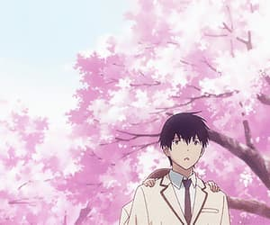 anime, flower, and japan image