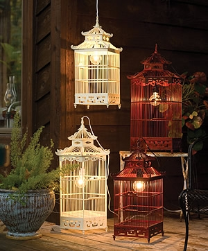 birdcage and light image