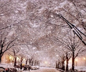 lights, park, and snow image