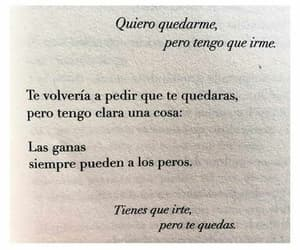 amor, quotes, and tristeza image