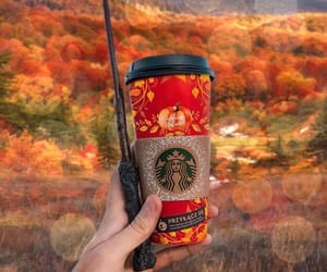 autumn, october, and starbucks image