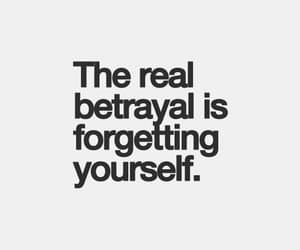 quotes, inspiration, and betrayal image