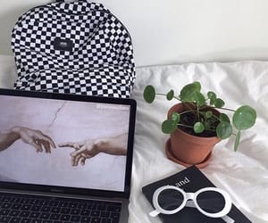 plant, aesthetic, and art image