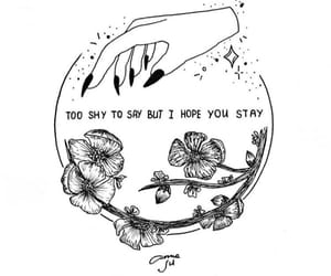 flowers, hand drawing, and Lyrics image