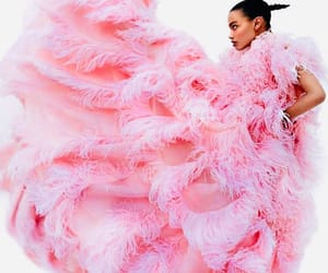 beauty, feathers, and pink image