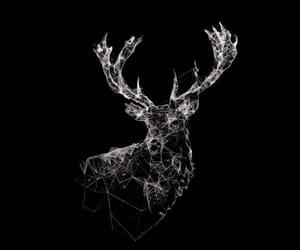 wallpaper, deer, and black image