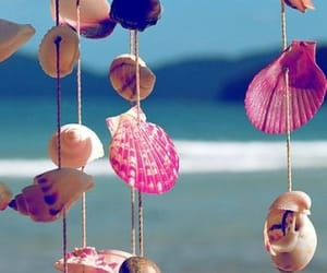 summer, beach, and shell image