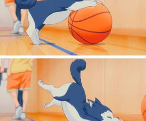 anime, kuroko no basket, and dog image