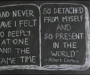 quotes, albert camus, and detachment image