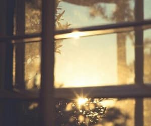 window, morning, and sun image