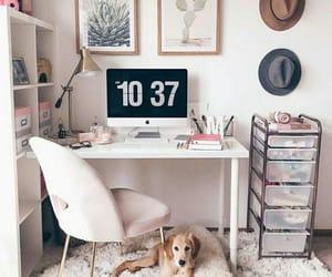 dog, inspiration, and pink image
