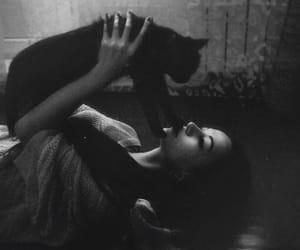 black cat, cat, and girl image
